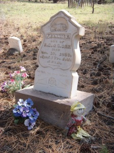 Rosita Cemetery - Frankie. Three years, four months, and 28 days.