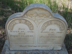 John and James born in 1880 and 1981 - both died August 20 1882.