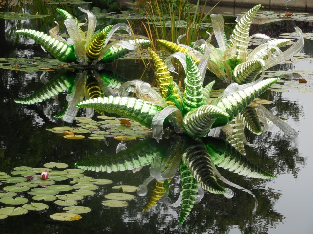 A dose of beauty at Denver's Botanical Garden to counter-act depression