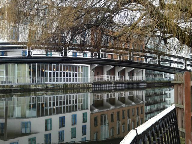 Regents Canal in Camden. The willows are on the verge.