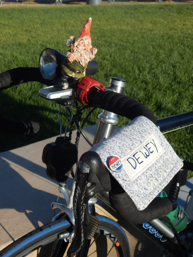 Dewey finds sitting on the handlebars more comfortable than sitting on the bicycle seat.
