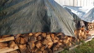 2015 10 10 wc wood 006