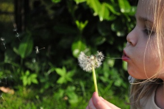 child-blowing-dandelion_432-19315881